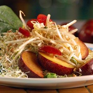 ensalada-frutas-germinado-p1