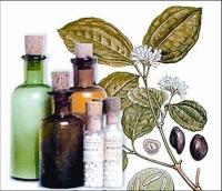 homeopatia para animales
