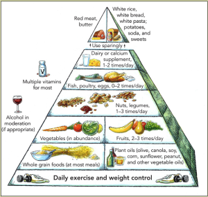 harvard_food_pyramid